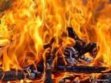 Dřevo a jeho spalování